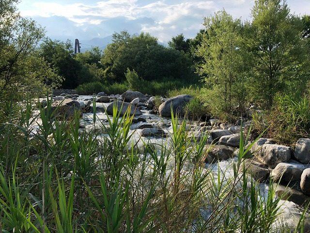 田舎の川遊び